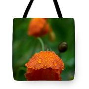 After The Rain 2 Tote Bag