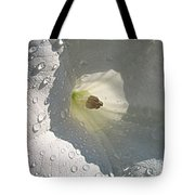 After The Rain..datura Innoxia Tote Bag