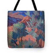 Afternoon Light - Santa Rosa Mountains Tote Bag