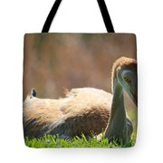 Afternoon Reprieve Tote Bag