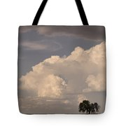 Afternoon Thunderstorm Building East Boulder County Co Plains Tote Bag