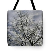 Against The Clouds Tote Bag