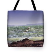 Against The Wind Tote Bag