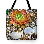 Agates And Cactus Tote Bag