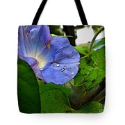 Aging Morning Glory Tote Bag