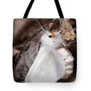 Agreeable Tiger Moth With Ant Tote Bag