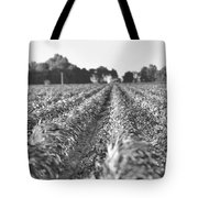Agriculture- Corn 2 Tote Bag