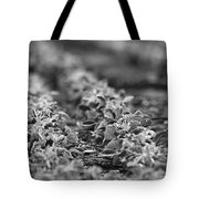 Agriculture- Soybeans 2 Tote Bag