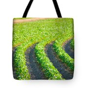 Agriculture- Soybeans 3 Tote Bag