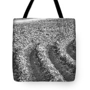 Agriculture- Soybeans 4 Tote Bag