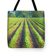Agriculture-soybeans 5 Tote Bag