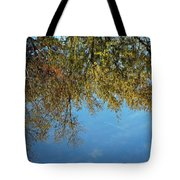 Airplane Reflections Tote Bag