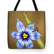 Alabama Blue-eyed Grass Wildflower - Sisyrinchium Angustifolium Tote Bag