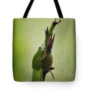 Alabama Green Tree Frog - Hyla Cinerea Tote Bag