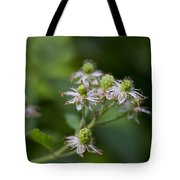 Alabama Wild Blackberries In The Making Tote Bag