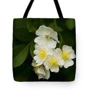 Alabama Wildflower Roses - Rosa Multiflora Tote Bag