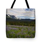 Alaska Lupine Tote Bag