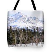 Alaska Range Peak Tote Bag