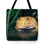 Albino Horned Frog Tote Bag