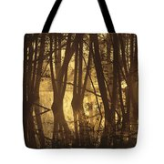 Alder Tree Marshland At Sunrise Tote Bag