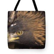 Alert Golden Eagle Tote Bag