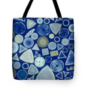 Algae, Fossil Diatoms, Lm Tote Bag