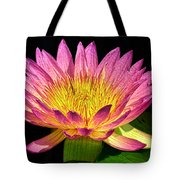 Alive With Color Tote Bag