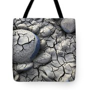 All Dried Out Tote Bag