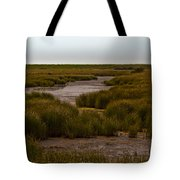 All Hallows Marshes Tote Bag