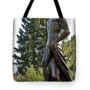 All Sparty Tote Bag