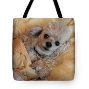 All Tucked In Tote Bag