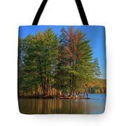 Allegheny 13723 Tote Bag