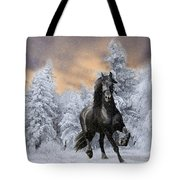 Allegro Coming Home Tote Bag