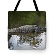 Alligator 1 Tote Bag