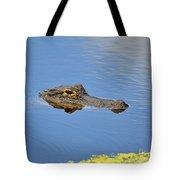 Alligator Afloat Tote Bag