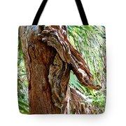 Alligator Cypress Knot Tote Bag