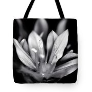 Allium Mono Tote Bag