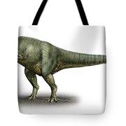 Allosaurus Fragilis, A Prehistoric Era Tote Bag