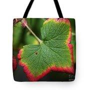 Almost Autumn Tote Bag
