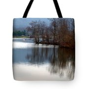 Almost Painting Tote Bag