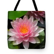 Almost Two Pink Water Lilies Tote Bag