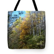 Along The Back Road Tote Bag
