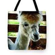 Alpaca Closeup Tote Bag
