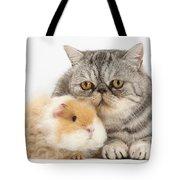Alpaca Guinea Pig And Silver Tabby Cat Tote Bag