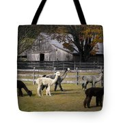 Alpacas In Vermont Tote Bag