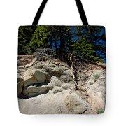 Alpine Pine Hangs On For Life Tote Bag