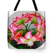Amaryillis Flower Ring Tote Bag