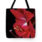 Amaryllis Flower Side View  Tote Bag