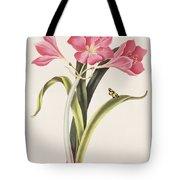 Amaryllis Purpurea Tote Bag