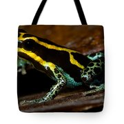 Amazonian Poison Frog Tote Bag
